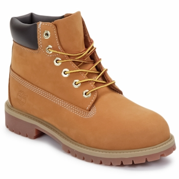 Mid boots Timberland 6 IN PREMIUM WP BOOT Brown 350x350