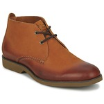 Mid boots Sperry Top-Sider BOAT OXFORD CHUKKA BOOT