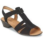 Sandals Gabor STEPHANIE