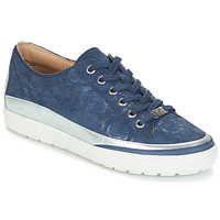 Shoes Women Low top trainers Caprice BUSCETI Blue