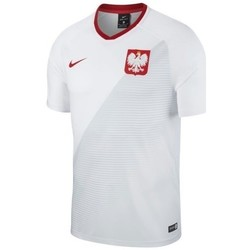 Clothing Boy short-sleeved t-shirts Nike WC 2018 Home Breathe Top Junior White