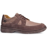 Shoes Men Derby Shoes Calzamedi Shoes  Shark M 2151 MARRON