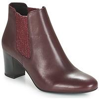 Shoes Women Mid boots André FONDANT Bordeaux