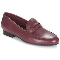 Shoes Women Loafers André TIM Bordeaux