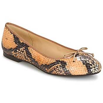 Shoes Women Flat shoes Betty London MICORO Brown / Python
