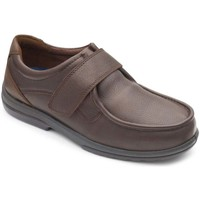 Shoes Men Loafers Padders Donald 311 Mens Casual Shoe brown