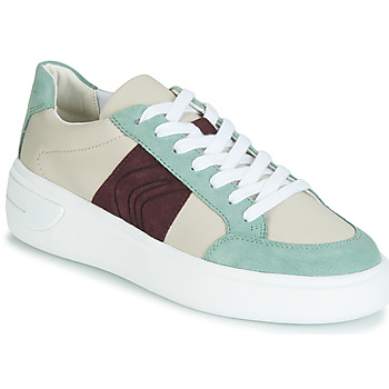 Shoes Women Low top trainers Geox D OTTAYA Cream / Green