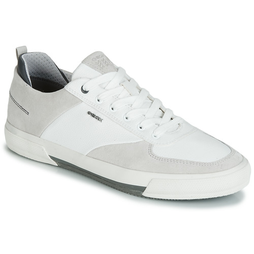 Shoes Men Low top trainers Geox KAVEN A White