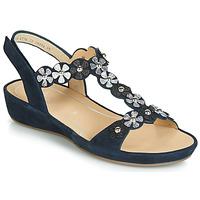 Shoes Women Sandals Ara CAP-HS Black