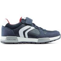 Shoes Men Low top trainers Geox JR ALFIER shoes NAVY