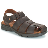 Shoes Men Sandals Panama Jack SAURON Brown