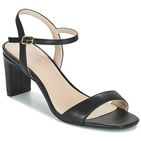 Shoes Women Sandals André CIGALE Black
