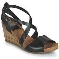 Shoes Women Sandals Kickers SPAGNOL Black