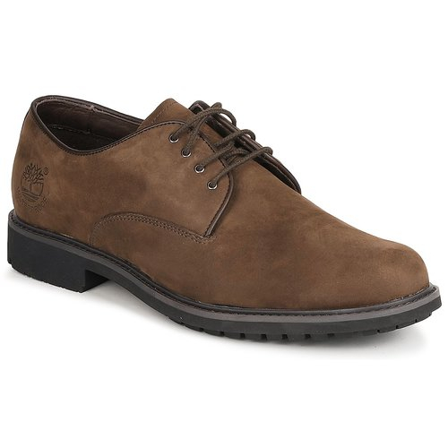 Shoes Men Derby Shoes Timberland EK STORMBUCK PLAIN TOE OXFORD Brown
