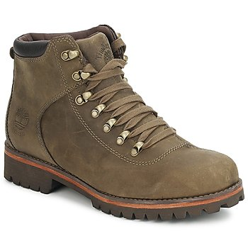 Shoes Men Walking shoes Timberland DARDIN HIKER Canteen / Nubuck