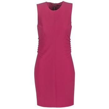 Clothing Women Short Dresses Marciano AMAYA Pink