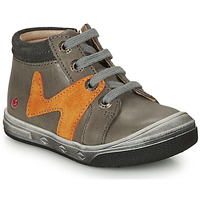 Shoes Boy Hi top trainers GBB OLINOU Grey / Ocre tan