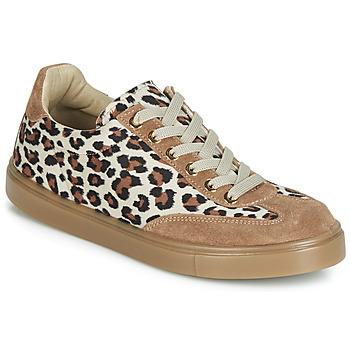 Shoes Women Low top trainers André ARDOISE Leopard