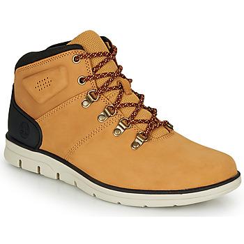 Shoes Men Hi top trainers Timberland BRADSTREET HIKER Wheat / Brown