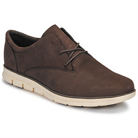 Shoes Men Low top trainers Timberland BRADSTREET PT OXFORD Brown