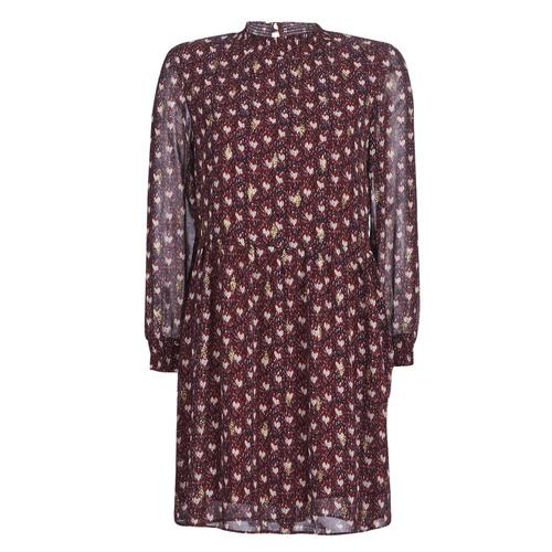 Clothing Women Short Dresses Betty London LILY Bordeaux