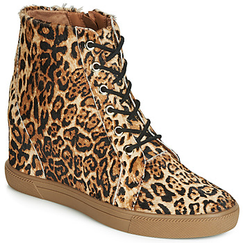 Shoes Women Shoe boots Cristofoli PONEY JAGUAR Leopard