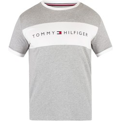 Clothing Men Short-sleeved t-shirts Tommy Hilfiger Flag Logo T-Shirt grey