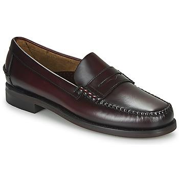 Shoes Men Loafers Sebago CLASSIC DAN Brown