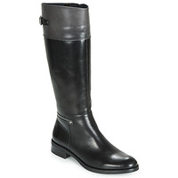 Shoes Women High boots Dorking TIERRA Black / Grey