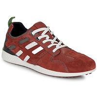 Shoes Men Low top trainers Geox U SNAKE.2 Brown / Brick