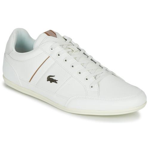Shoes Men Low top trainers Lacoste CHAYMON 319 1 White