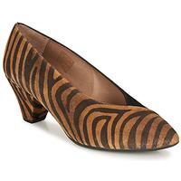 Shoes Women Heels Wonders I7601-ZEBRATO-CUERO-ANTE-NEGRO Brown