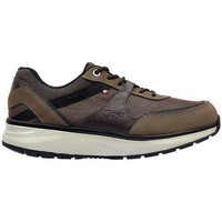 Shoes Men Low top trainers Joya TONY II BROWN