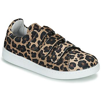 Shoes Women Low top trainers Yurban LABANE Leopard