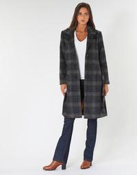 Clothing Women Coats Cream CHEKIA Marine / Grey