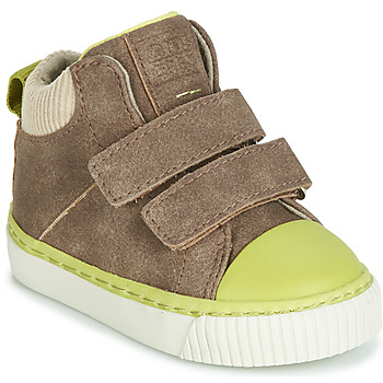 Shoes Boy Hi top trainers Gioseppo ERDING Taupe
