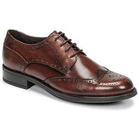 Shoes Men Derby Shoes Carlington LOUVIAN Brown