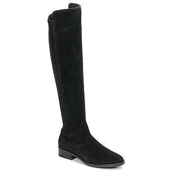 Shoes Women Thigh boots Clarks PURE CADDY Black