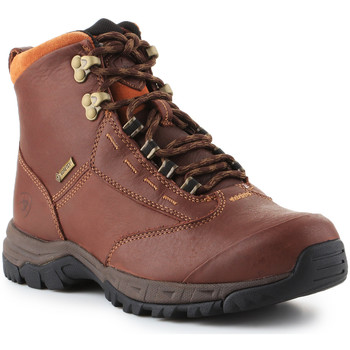Shoes Women Mid boots Ariat Berwick lace GTX Insulated 10016298 brown