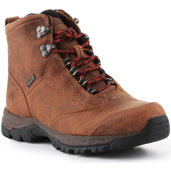 Shoes Women Walking shoes Ariat Trekking shoes  Berwick Lace Gtx Insulated 10016229 brown