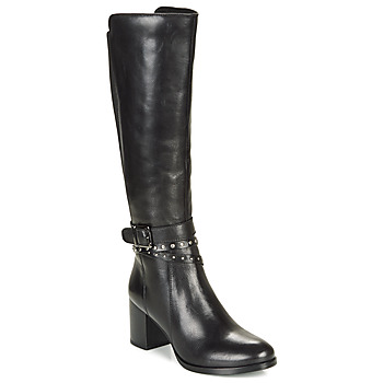 Shoes Women High boots André NAIGE Black
