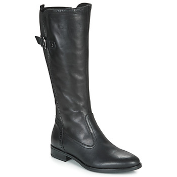 Shoes Women High boots André MAELLE Black