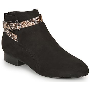 Shoes Women Ankle boots André EVANE Black