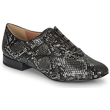 Shoes Women Derby Shoes André VIOLETTE Grey