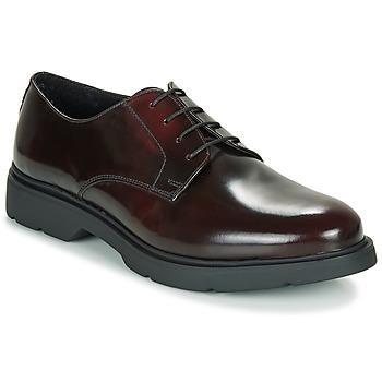 Shoes Men Derby Shoes André CHAD Bordeaux