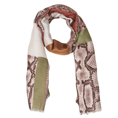 Clothes accessories Women Scarves / Slings André AMARANTE Kaki