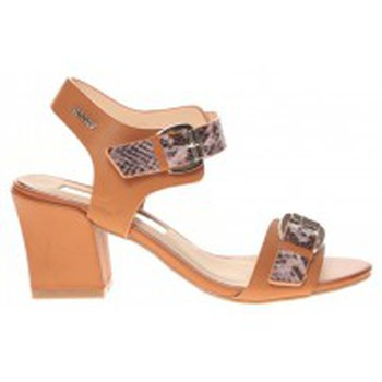 Shoes Women Sandals Cassis Côte d'Azur Sandales Avril Camel Brown