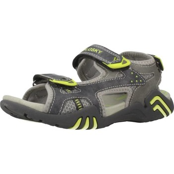 Shoes Boy Outdoor sandals Pablosky 957050 Grey