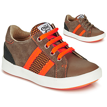 Shoes Boy Low top trainers GBB ANTENO Brown