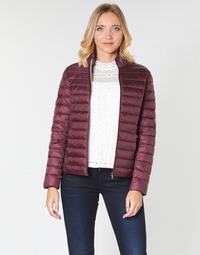 Clothing Women Duffel coats JOTT CHA Aubergine